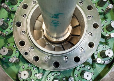 guide vane apparatus and turbine shaft